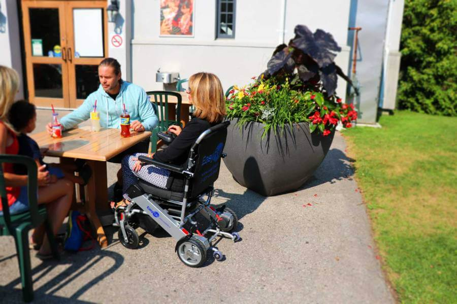 Standard Model Electric Wheelchair family-picnic
